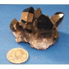 Gamma Radiated Cluster - small